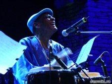 tata_guines 2 in blue