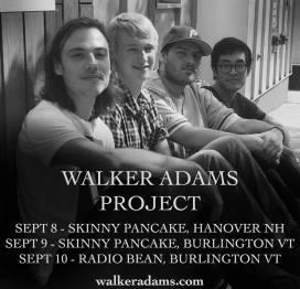 Walker Adams Project 1