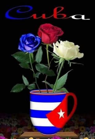 Cuba jarra preciosa de Nieves Leonard